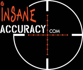 Insane Accuracy Logo